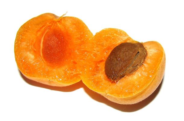 L'abricot